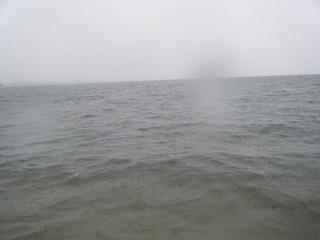雨、荒れ.JPG