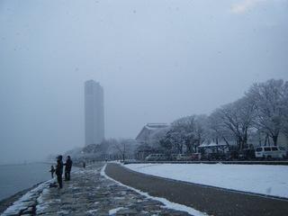 雪しんしん.JPG